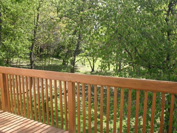 Deck View to Woods