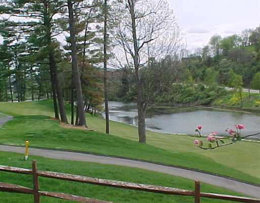 Golf Course and Lake Views