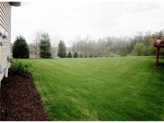Lots of Lawn Area