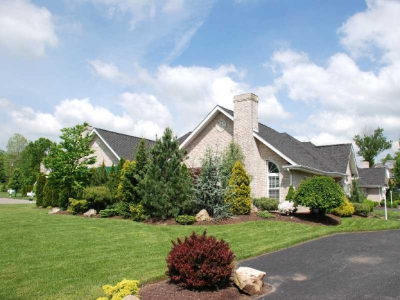 Meticulous Landscaping
