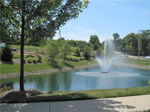 Look at the pretty pond right in the community!